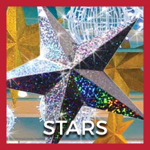 Holographic Stars